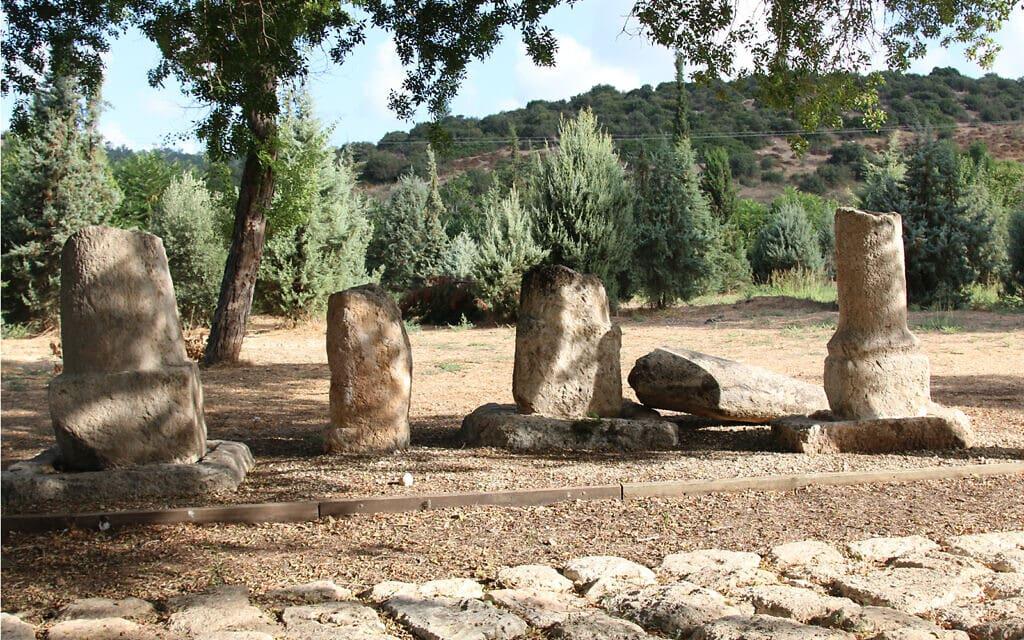 אבני דרך כבדות מהתקופה הרומית, שתיים מהן עם כיתוב, בגן הארכיאולוגי גבעת ישעיהו. הן הובאו למקום לאחר שמנופים הוציאו אותן מהמיקום בו עובר היום כביש 38 (צילום: שמואל בר-עם)