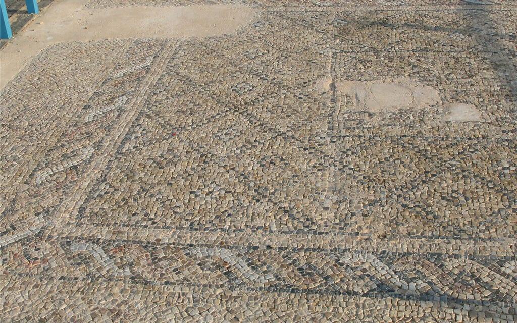 רצפת פסיפס מהתקופה הרומית בגן הארכיאולוגי באשקלון (צילום: שמואל בר-עם)