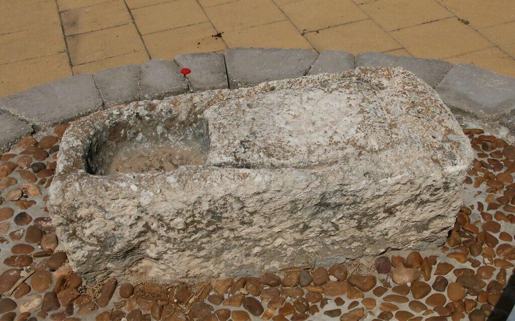 מכבש זיתים קטן מוצג בגן הארכיאולוגי בהוד השרון, המציג עתיקות מחיי היום-יום של החקלאים בעת העתיקה (צילום: שמואל בר-עם)