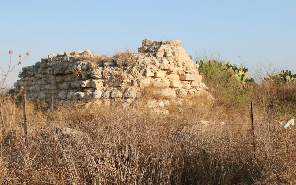 חורבות מבצר צלבני בן שתי קומות בשם טנטורה, שהשתמש במצבות יהודיות מתקופת בית שנה ליסודות שלו, בגן הארכיאולוגי תיתורה (צילום: שמואל בר-עם)