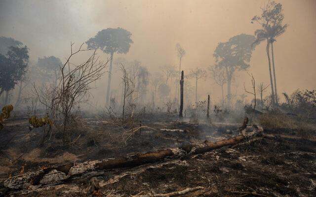 שריפת קרקעות במדינת פארה, ברזיל. 23 באוגוסט 2020 (צילום: AP Photo/Andre Penner)