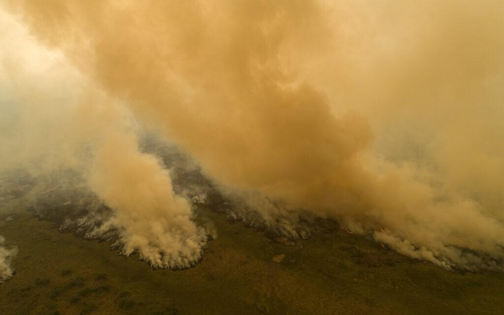 אש מכלה שטחים ליד פוקונה בברזיל. ספטמבר 2020 (צילום: AP Photo/Andre Penner)