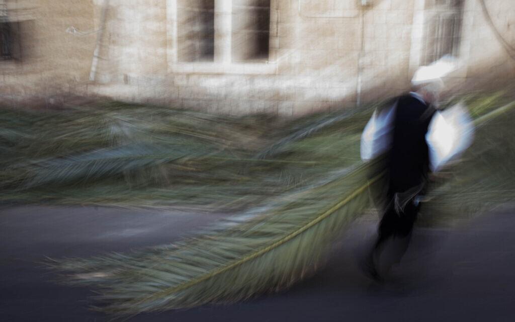 סוכות, אילוסטרציה (צילום: Yonatan Sindel/Flash90)