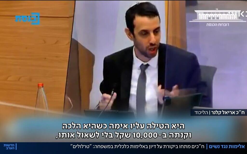 צילום מסך מתוך דיון בכנסת על אלימות כלכלית