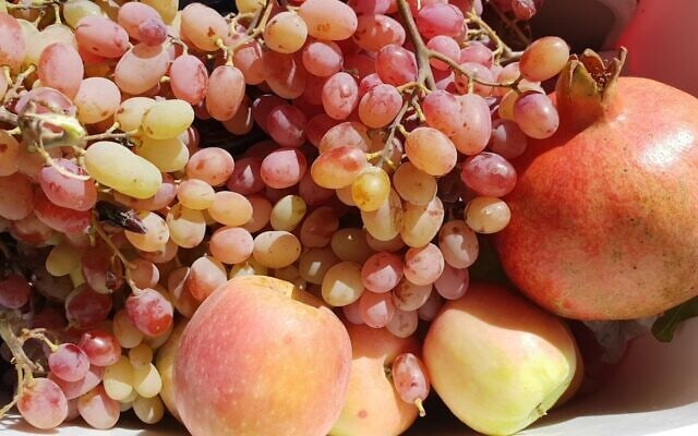 פירות (צילום: איריס פוסקלינסקי)