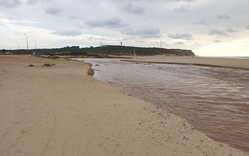 נחל פולג וחוף פולג (צילום: אביב לביא)