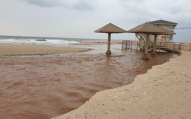 חוף פולג. כמויות גדולות של ביוב זרמו לים, השבוע (צילום: אביב לביא)