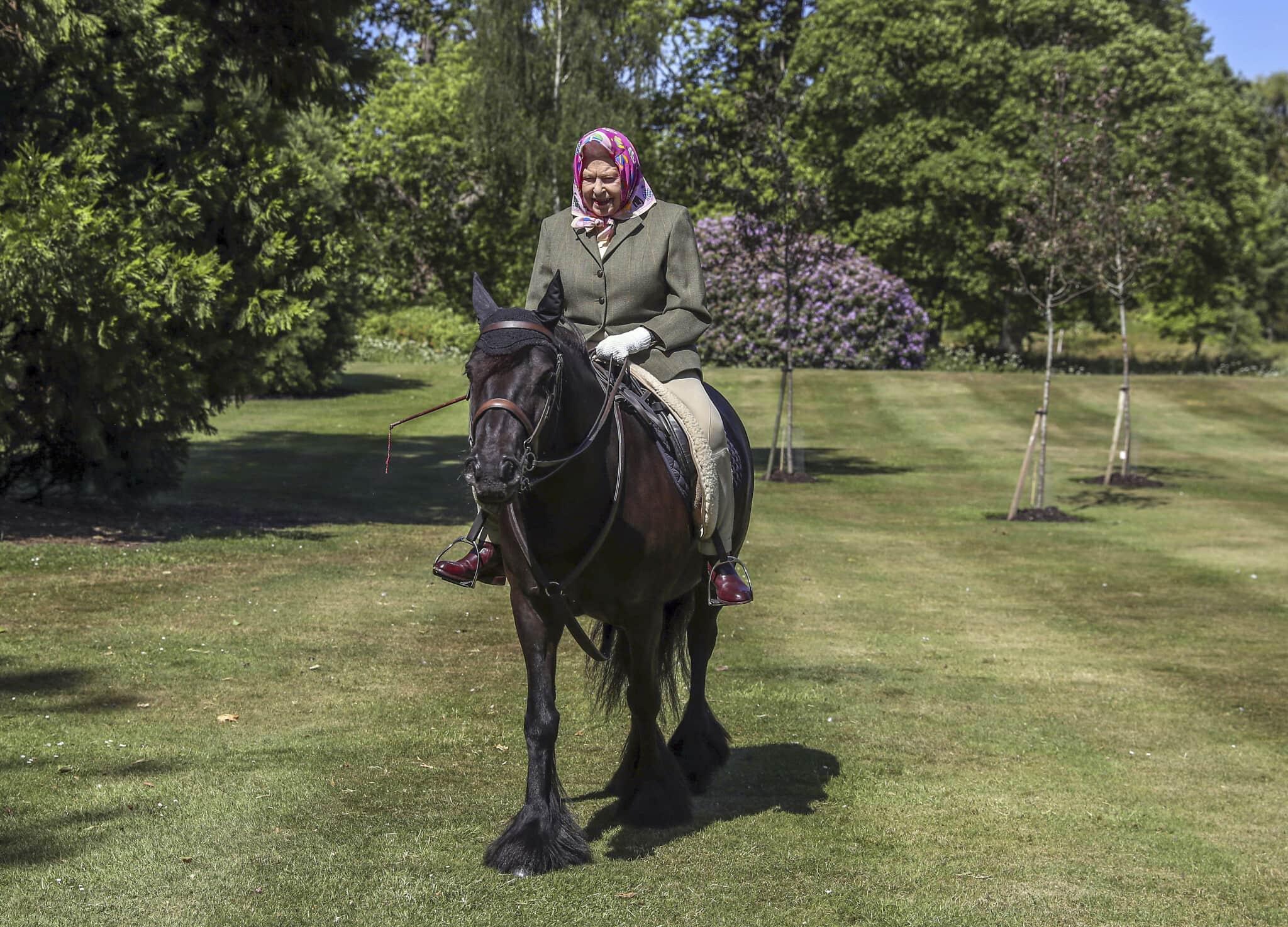 המלכה אליזבת השנייה, בגיל 94, עדיין עם צעיף משי על ראשה, רוכבת על סוס בטירת בלמורל בסקוטלנד. 31 במאי 2020 (צילום: Steve Parsons/Pool via AP)