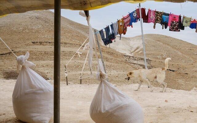 אוהל בדואי במדבר יהודה. אוקטובר 2019 (צילום: Sara Klatt/Flash90)