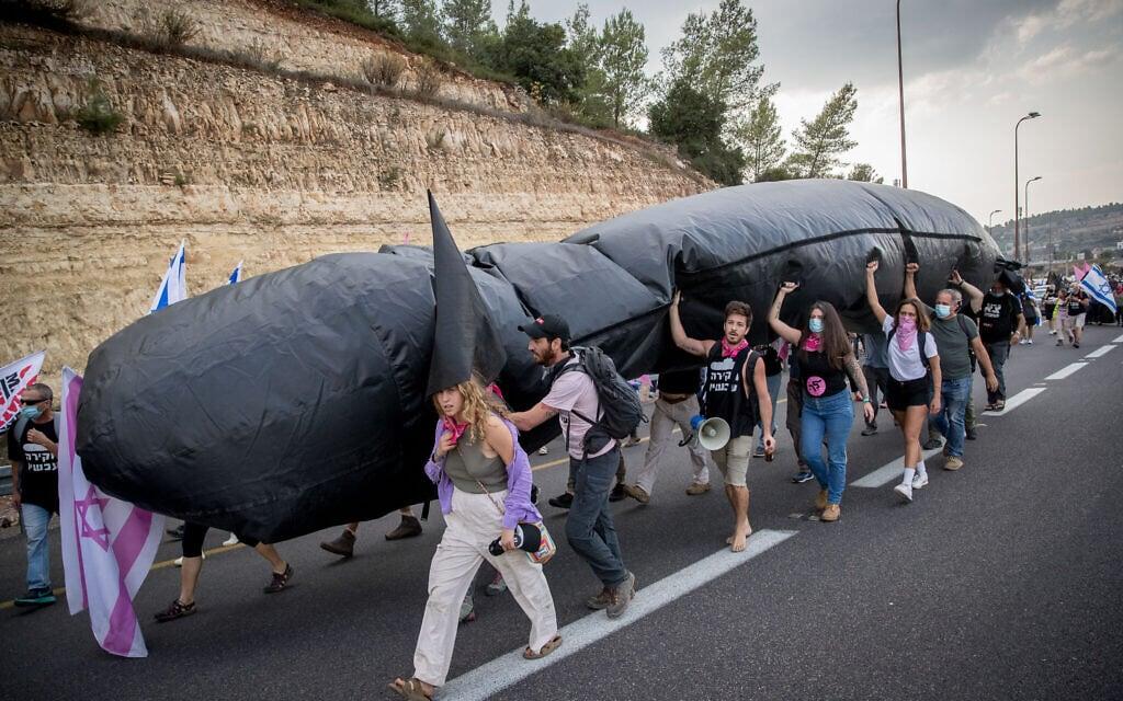 תהלוכת מפגינים בכביש 1, 14 בנובמבר 2020 (צילום: יונתן זינדל/פלאש90)