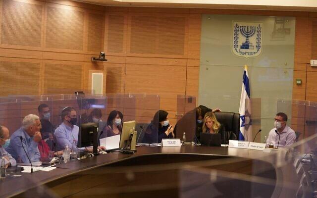 ועדת הפנים של הכנסת (צילום: דני שם טוב/דוברות הכנסת)
