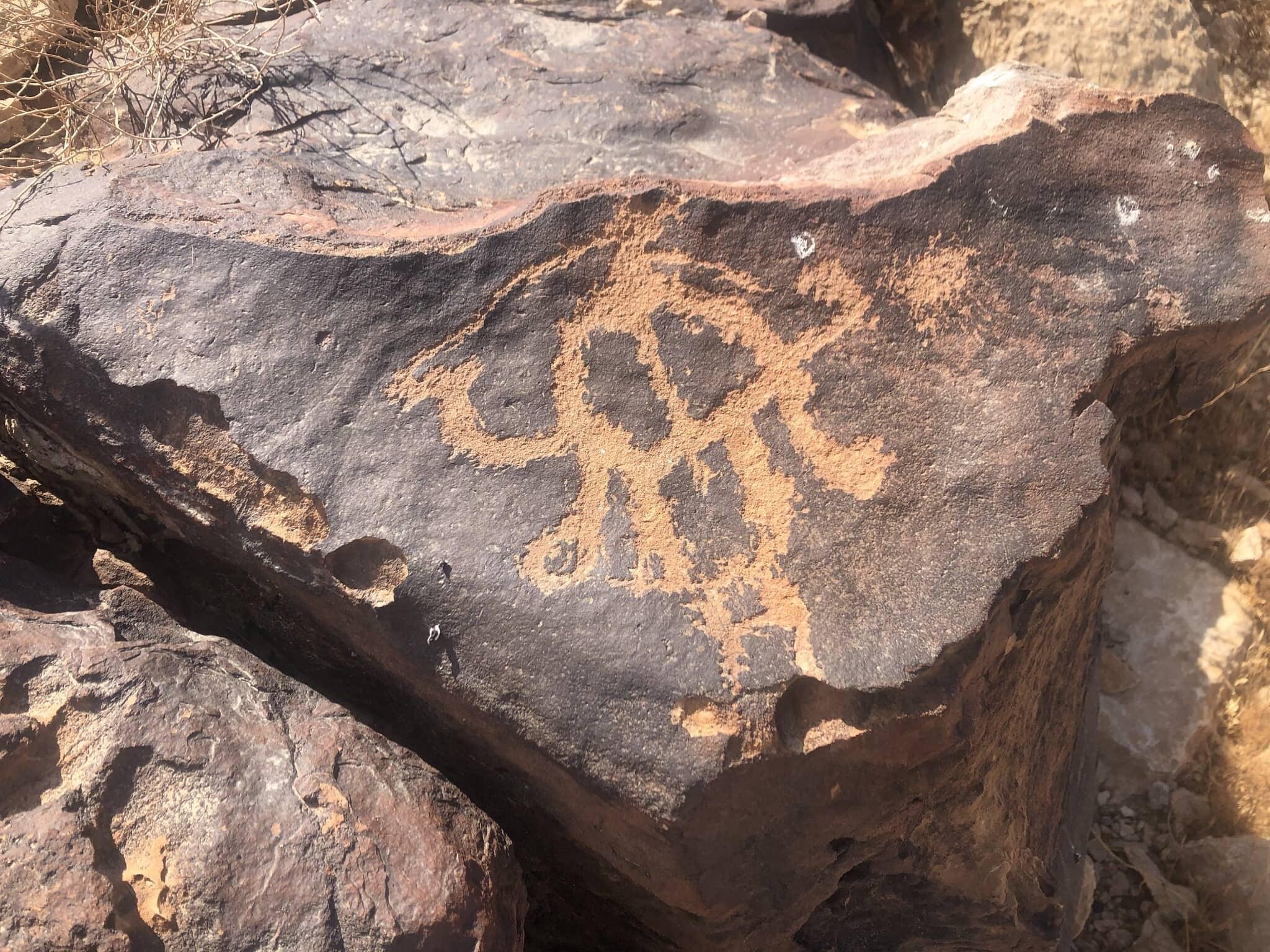 תחריט של גמל על סלע בהר כרכום (צילום: סו סורקיס)