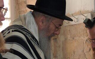 הרב צבי טאו (צילום: מיכאל יעקובסון, ויקיפדיה)