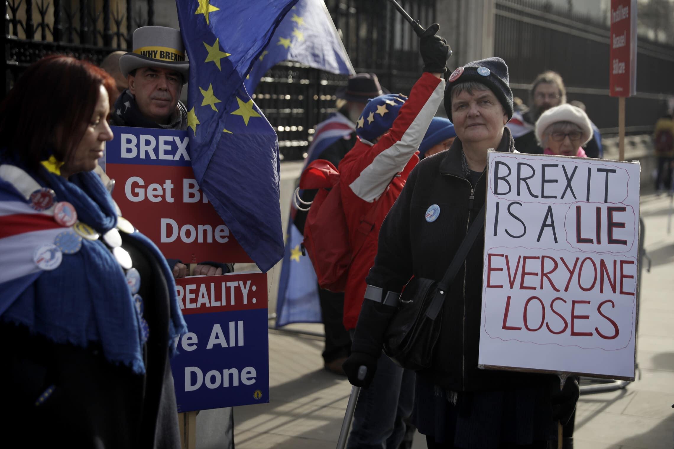 הפגנות מול בית הפרלמנט נגד הברקזיט, 5 בפברואר 2020 (צילום: AP Photo/Matt Dunham)
