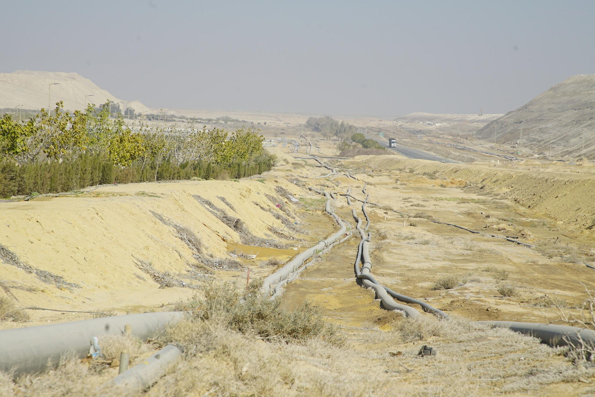 מישור רותם באזור ים המלח (צילום: גרינפיס)