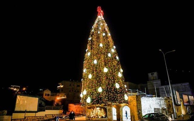 עץ אשוח ענק בנצרת, מוקדם יותר החודש (צילום: פלאש90)