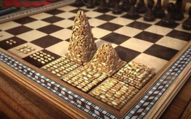 גרגרי חיטה על לוח שחמט (צילום: pixabay.com)