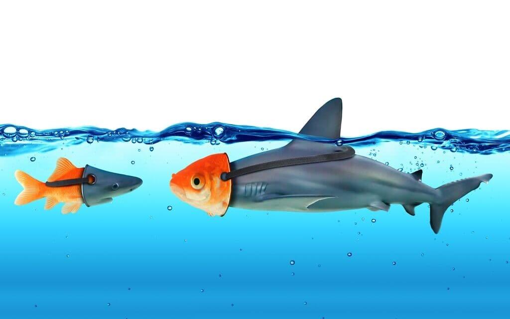דג וכריש מחופשים, אילוסטרציה (צילום: RomoloTavani / iStock)