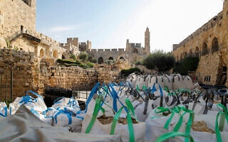 חפירות במתחם מוזיאון מגדל דוד, נובמבר 2020 (צילום: ריקי רחמן)