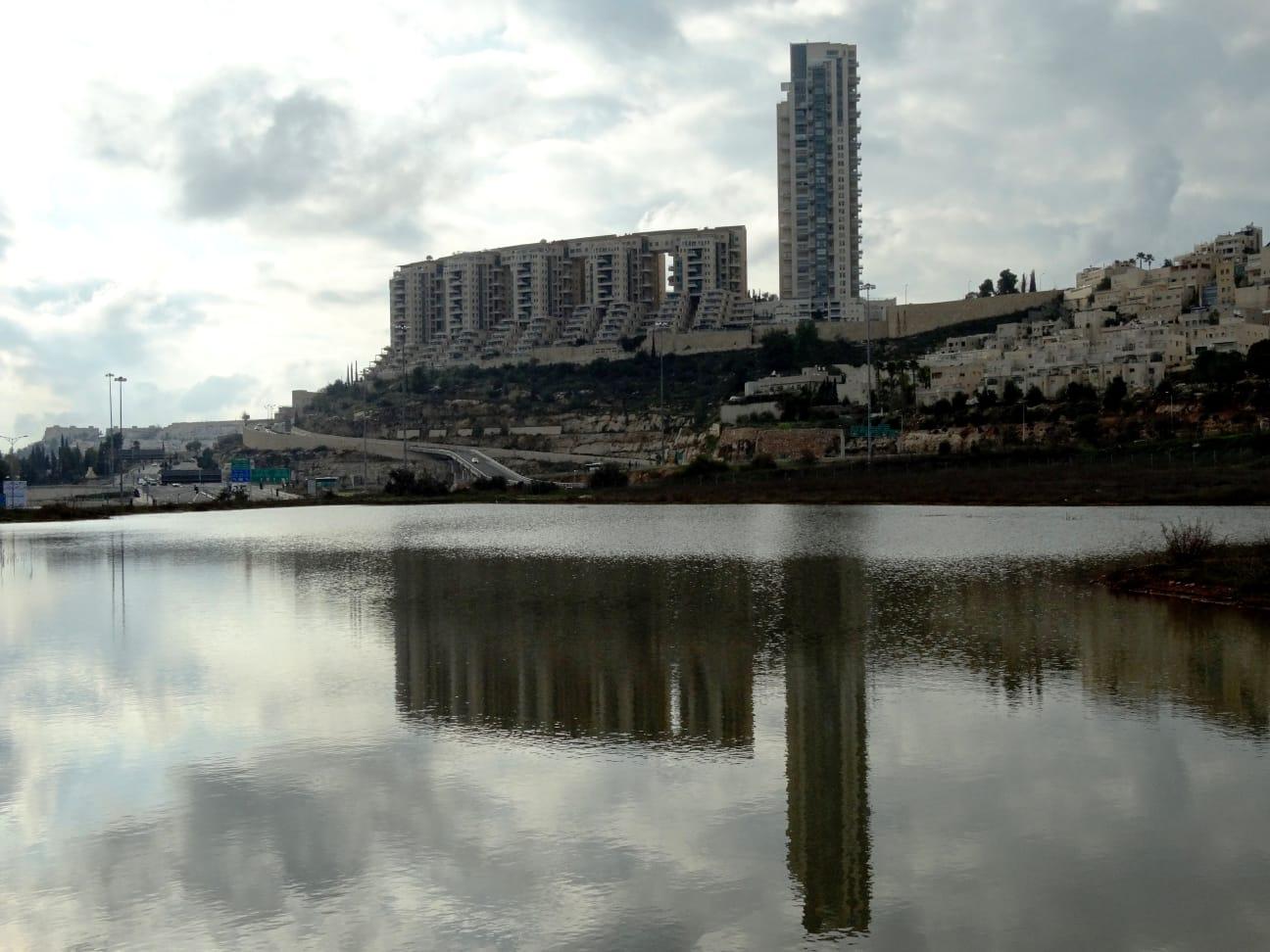האגם בעמק הצבאים בירושלים (צילום: דב גרינבלט/החברה להגנת הטבע)
