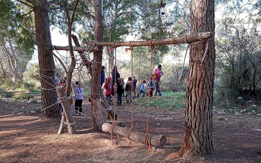 גן היער בעמק הצבאים בירושלים (צילום: קבוצת כיתת יער, פייסבוק)
