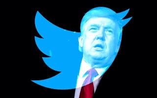 דונלד טראמפ וטוויטר, אילוסטרציה (צילום: AP Photo/Evan Vucci, טוויטר, עיבוד מחשב)