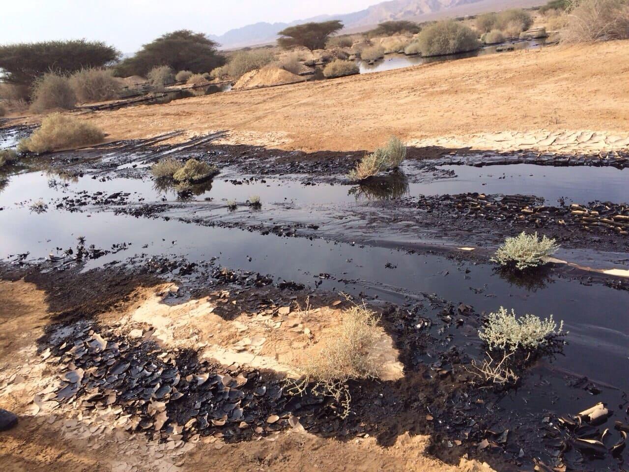 """הדליפה מצינור קצא""""א באזור הערבה בדצמבר 2014 (צילום: רשות הטבע והגנים)"""