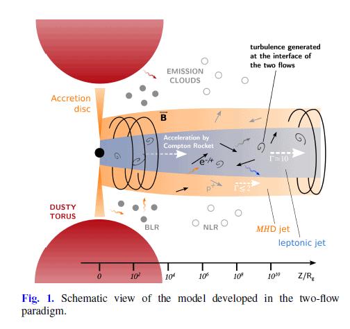 תומס ווילום, מודל שתי הזרימות של הסילונים (איור: תומס ווילום, מודל שתי הזרימות של הסילונים)