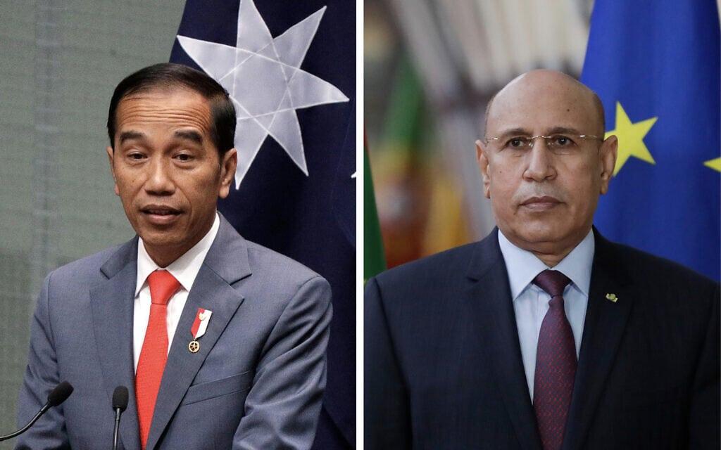 נשיא מאוריטניה מוחמד אולד גזורני ונשיא אינדונזיה ג'וקו וידודו (צילום: AP Photos)