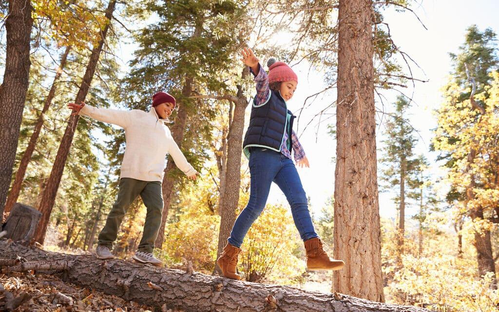 ילדים ביער. אילוסטרציה (צילום: iStock)