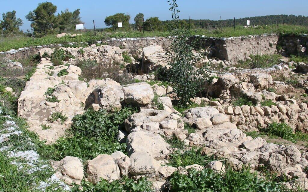 העיר המקראית צקלג פעלה במאה ה-12 לפני הספירה (צילום: שמואל בר-עם)