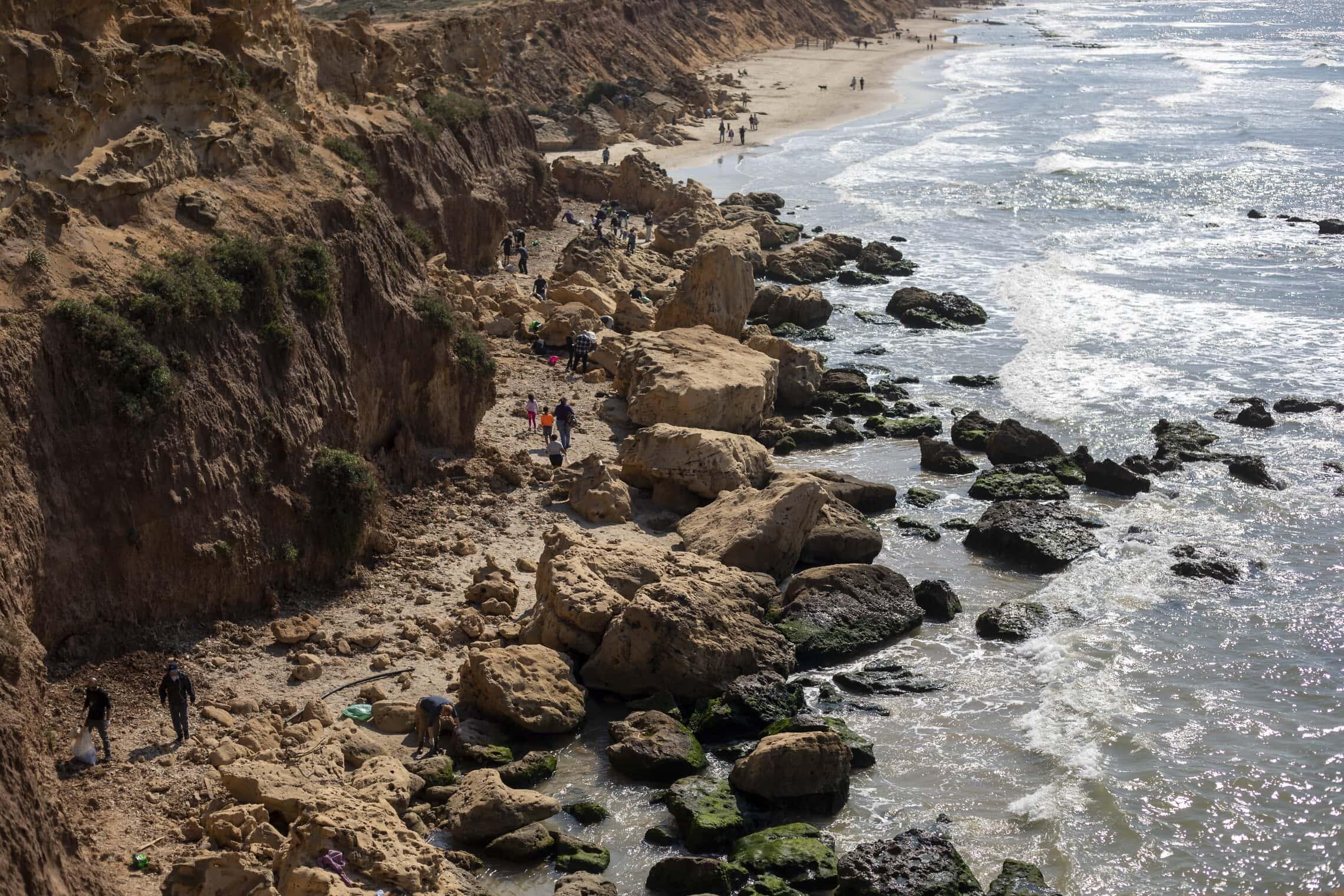 מתנדבים מנקה בחוף בעקבות דליפת הנפט שגרמה לזיהום בחופי הארץ, 20 בפברואר 2021 (צילום: AP Photo/Ariel Schalit)
