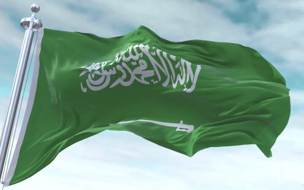 דגל ערב הסעודית, צילום מסך מסרטון של  Flaggram – World of Flags