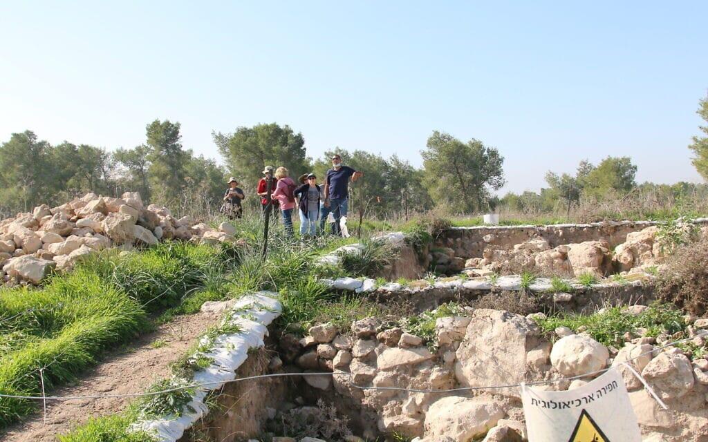 אתר החפירות צקלג (צילום: שמואל בר-עם)