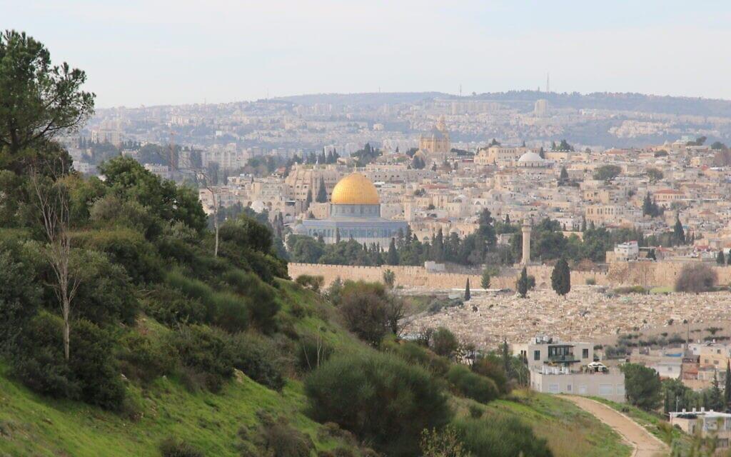 הנוף הנשקף מעמק צורים שבירושלים (צילום: שמואל בר-עם)