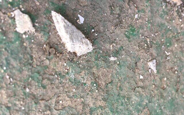 חתיכות אסבסט מפוזרות בפארק יבנה (צילום: גיל צפריר)