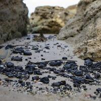 חתיכות זפת על החוף במכמורת, 1 במרץ 2021 (צילום: AP Photo/Ariel Schalit)