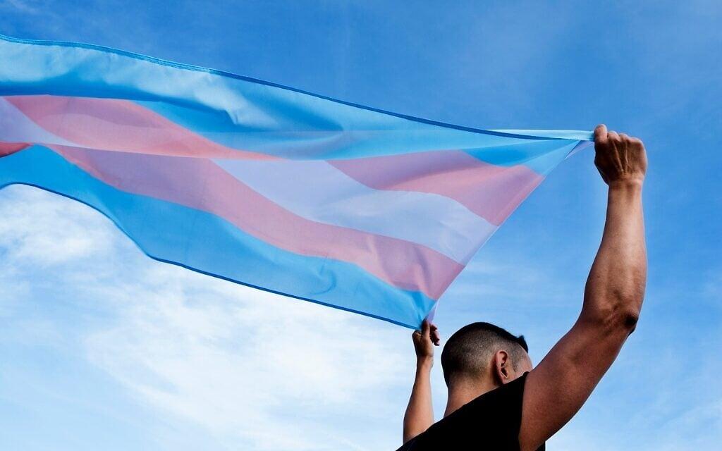 צעיר מניף את דגל הקהילה הטרנסג'נדרית (צילום: iStock)