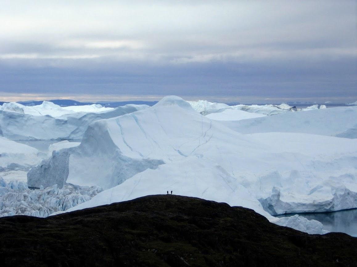 Ilulissat IceFjord (צילום: אמנון פורטוגלי)