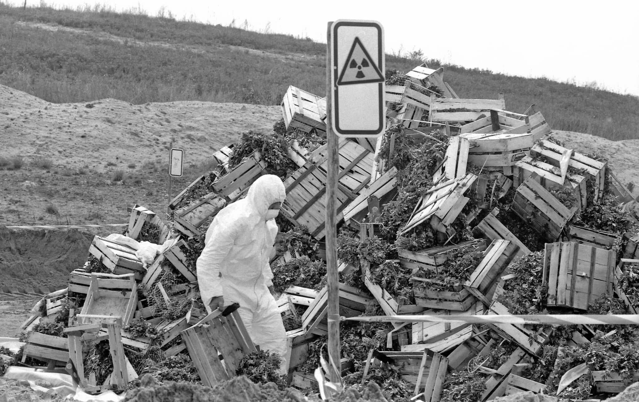 ארגזים של ירקות במזבלה בברלין, שהושלכו כי הזדהמו מקרינה באסון צ'רנוביל, 9 במאי 1986 (צילום: AP Photo/Rainer Klostermeier/str))
