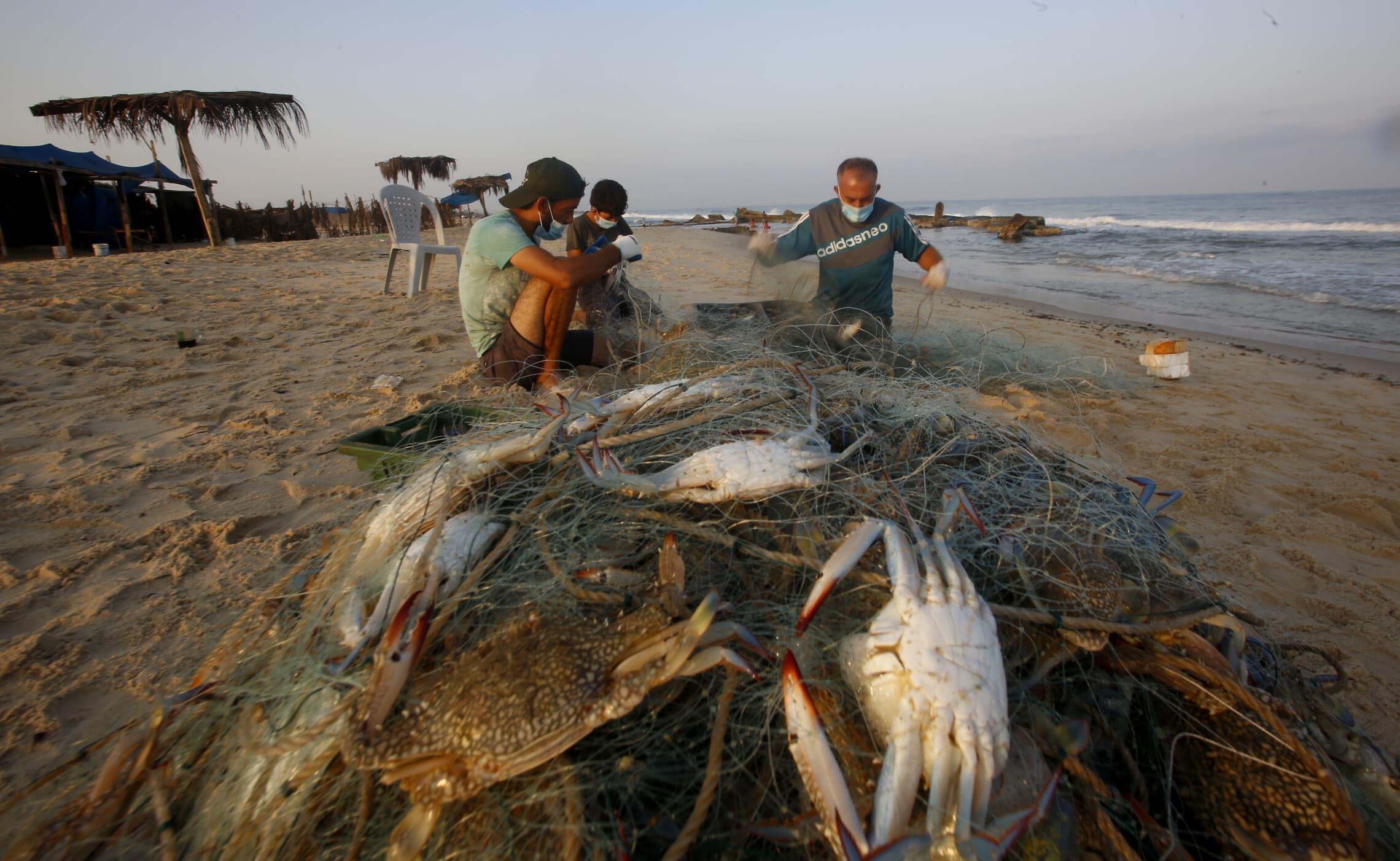 החיים בעזה: דייגים עוטים מסכות במהלך מגפת הקורונה, ספטמבר 2020 (צילום: AP Photo/Hatem Moussa)