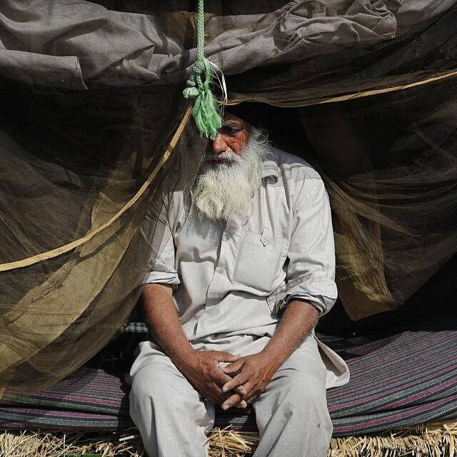 חקלאי הודי שובת במחאה על החוקים החדשים של ממשלת הודו, 5 במרץ 2021 (צילום: AP Photo/Manish Swarup)