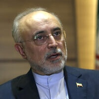 רא הארגון לאנרגיה אטומית של איראן, עלי אכבר סאלחי, בטהראן, 7 באוקטובר 2019 (צילום: AP Photo/Vahid Salemi, File)