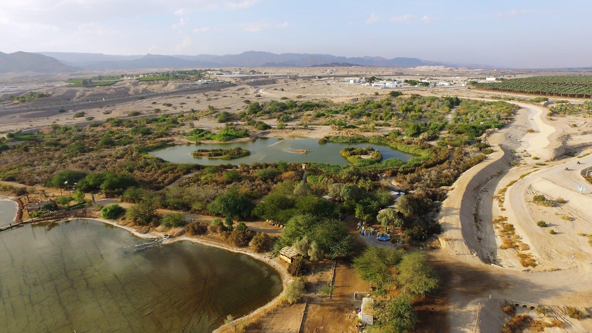 מבט אווירי על המרכז הבינלאומי לצפרות באילת (צילום: דב גרינבלט)