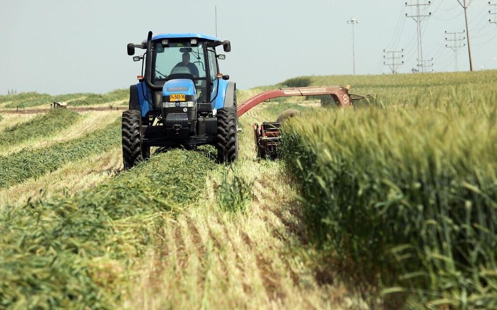 חקלאות בעמק יזרעאל (צילום: יוסי זמיר/פלאש90)