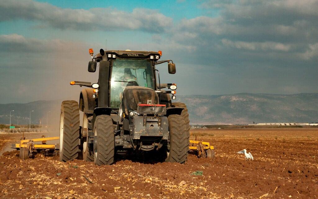 חריש בעמק יזרעאל (צילום: ענת חרמוני/פלאש90)