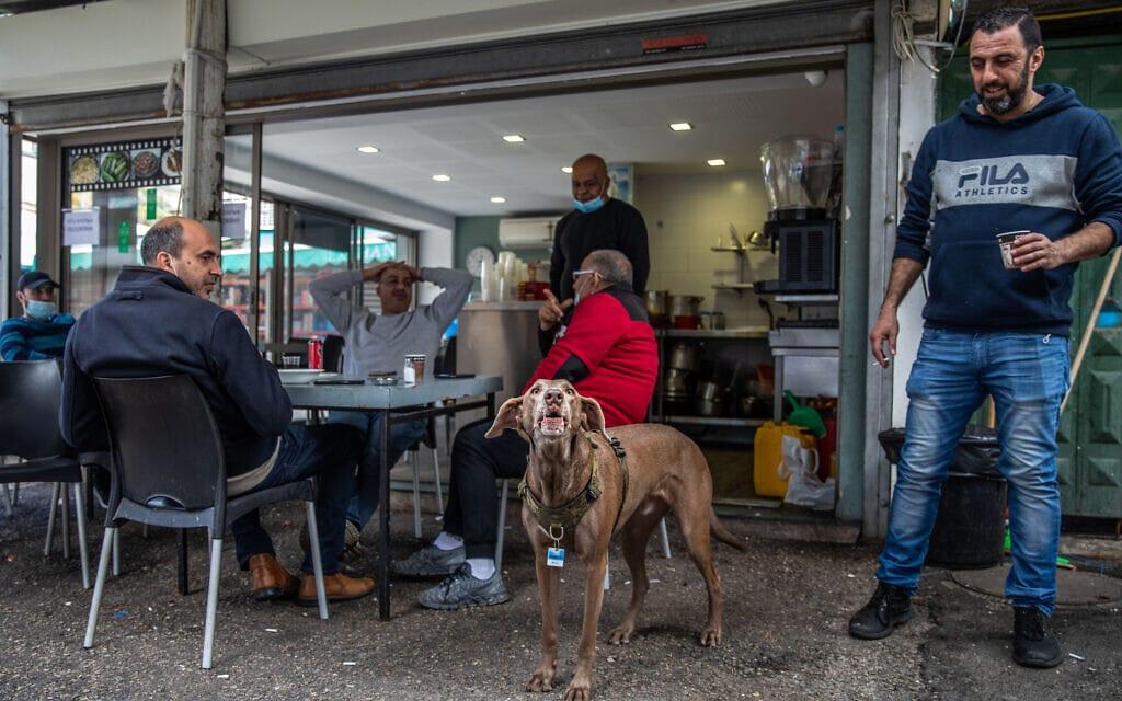 בית קפה בוואדי ניסנאס. למצולמים אין קשר לנאמר בכתבה (צילום: שיר תורם/פלאש90)