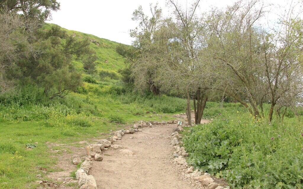 beginning-of-the-trail-592 (צילום: שמואל בר-עם)