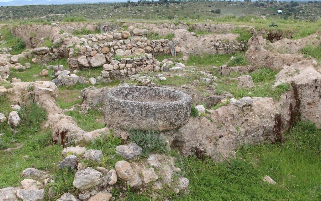 אתר החפירות בתל צפית (צילום: שמואל בר-עם)