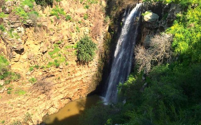 מפל הג'ילבון (צילום: רשות הטבע והגנים)